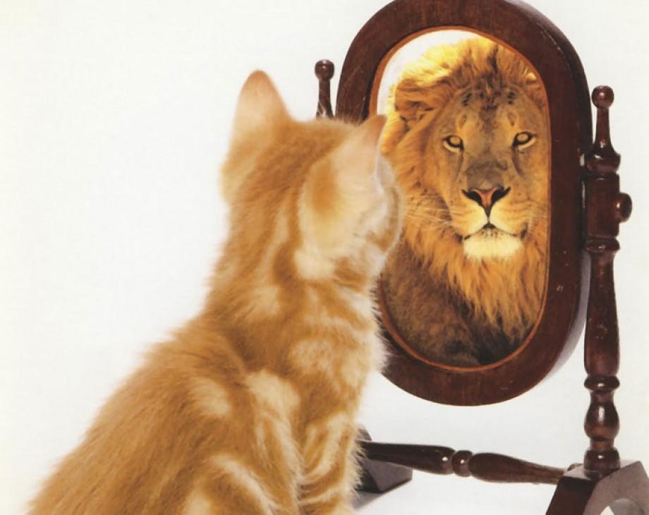 Wat zie jij als je in de spiegel kijkt?